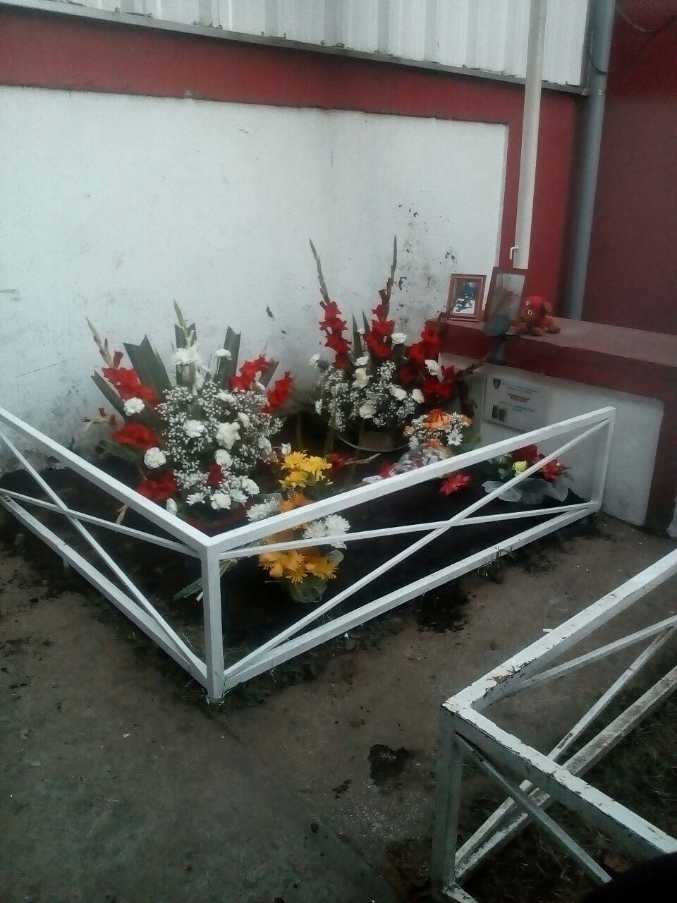 Cuerpo de Bomberos de Santa Bárbara despide con pesar a mascota y guardían del cuartel